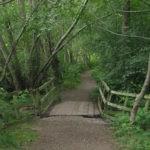 Brodie Wood Walk near Forres